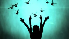 Silhouette of girl and dove, freedom and peace concept